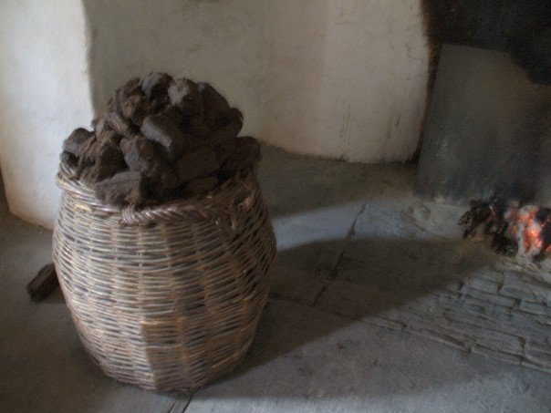 Close up of peat basket